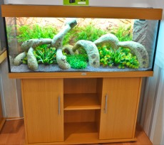 akvarij Juwel Rio 240