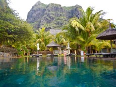 palme ob bazenu