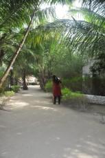 pot na otoku