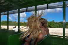 veter v laseh