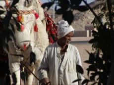 Egipcan
