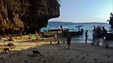 31 MONKEY BEACH PHI PHI DON