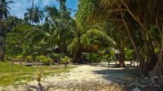66LOH MOO DEE BAY THAILAND