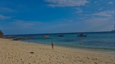 66SHARK ISLAND