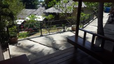 TAJSKA COCO PALM