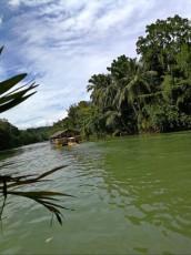 BOHOL RIVER TRIP