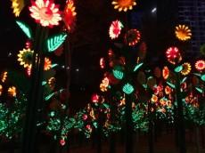 CITY OF DIGITAL LIGHTS KL
