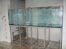 akcija akvarij