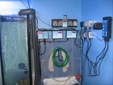 elektronik ain avtomatika - dodatna oprema za morski akvarij