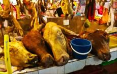 Chowkid market mesnica Kuaal Lumpur