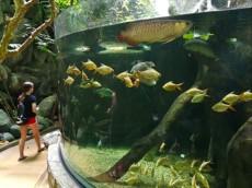 Langkawi velik akvarij