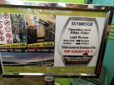 skybridge ticket