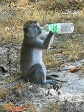 trip kraja opic