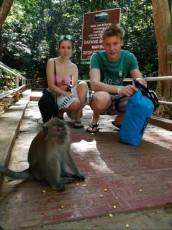 trip monkey