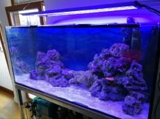 aquarius LED svetilna enota
