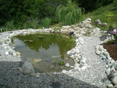 plaza ob ribniku