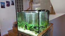 akvarij izdelan po narocilu