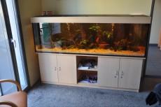 fish tank 720l