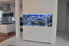 nov akvarij