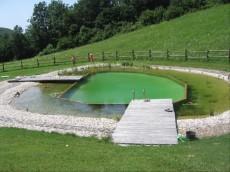 ogromen plavalni ribnik