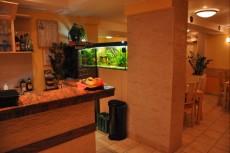 akvarij nad sankom