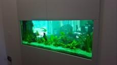 nakup akvarija