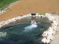 plavalni ribnik10