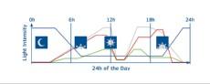 smart kontroler graf