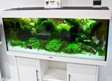 akvarij Juwel Rio 240 - Bel