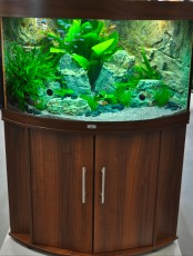 akvarij Juwel Trigon 350