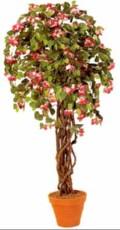 Cvetoce drevo