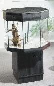 COLORADO905