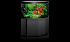 akvarij juwel trigon 350 crn