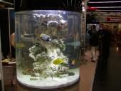 okrogli akvarij