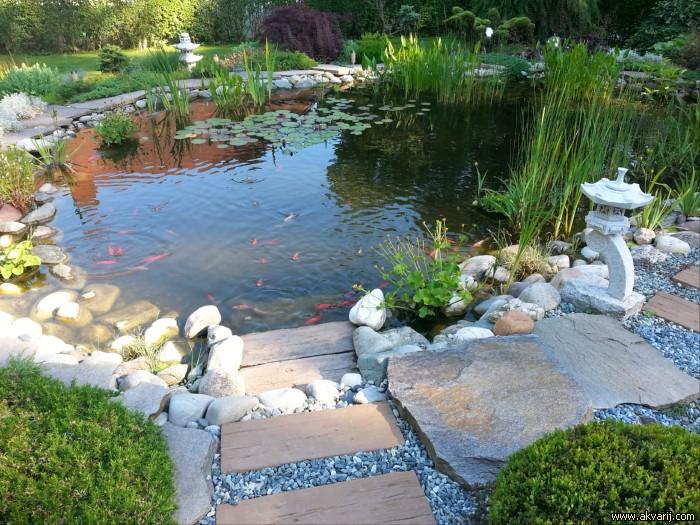 aqua ro design ribniki akvariji fontane. Black Bedroom Furniture Sets. Home Design Ideas